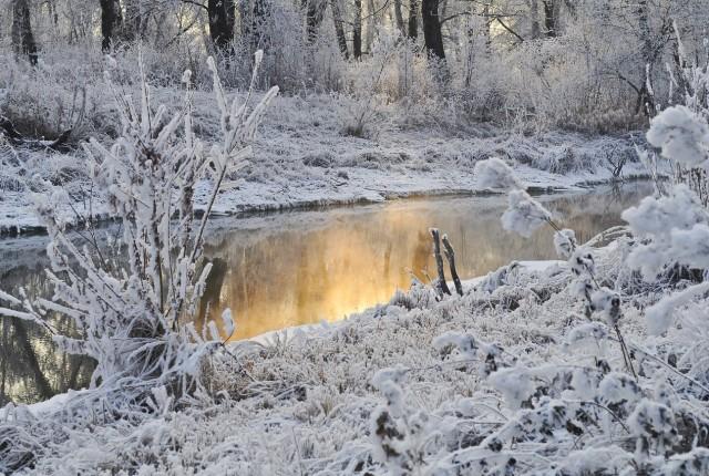 """Un fiume con la sponda innevata e ghiacciata che mi ricorda il film disney """"Frozen"""""""