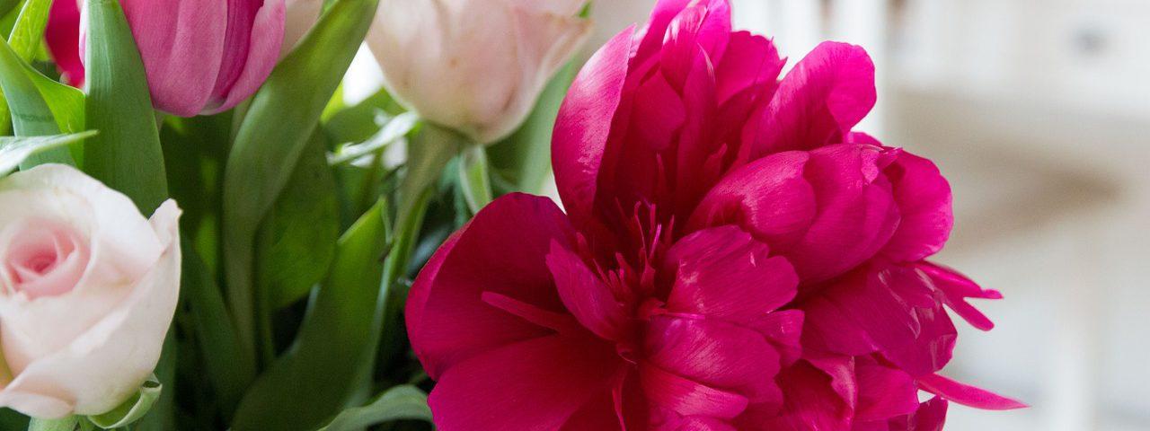 flowers-759585_1280