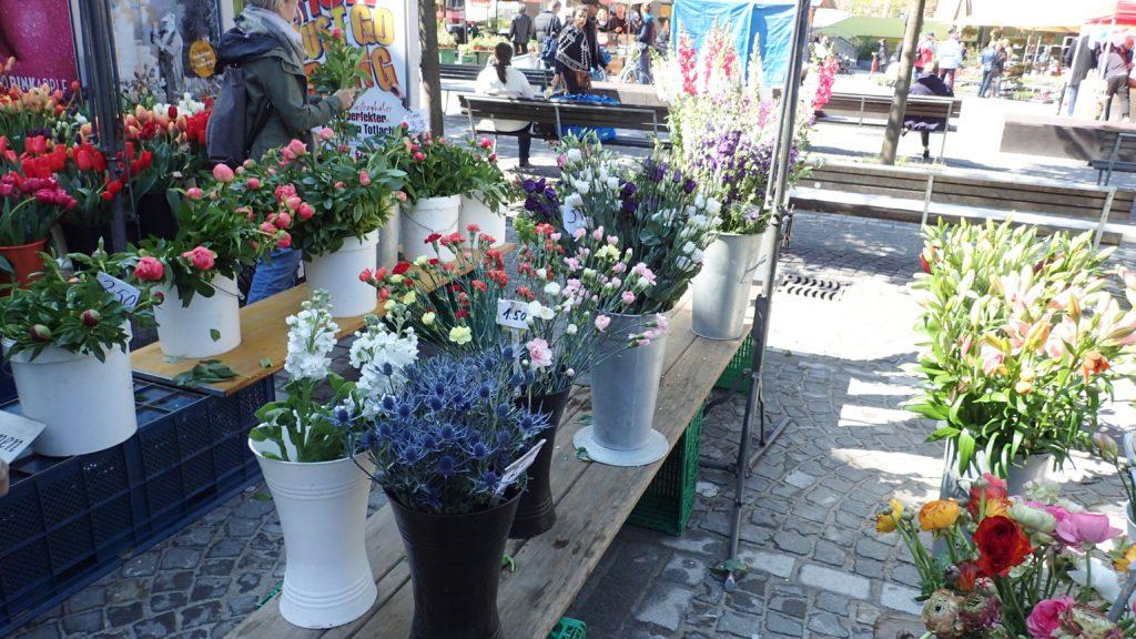 Diversi fiori in esposizione al mercato di Zurigo Altstetten