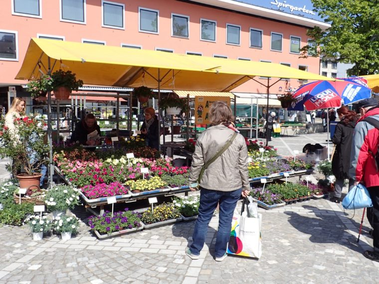 Fiori e erbe aromatiche al mercato
